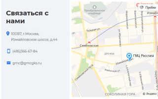 ГМЦ Росстата – описание и возможности сервиса