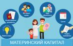 Материнский капитал в 2021 году, особенности и выплаты