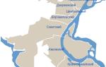 Население города Волгоград