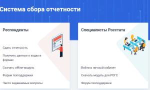 Система сбора отчетов Websbor.gks.ru и её возможности