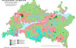 Население Татарстана – актуальная статистика и информация