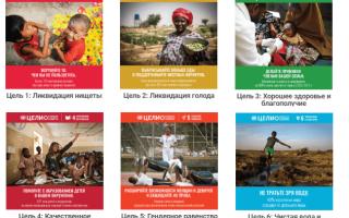 Цели устойчивого развития и их особенности